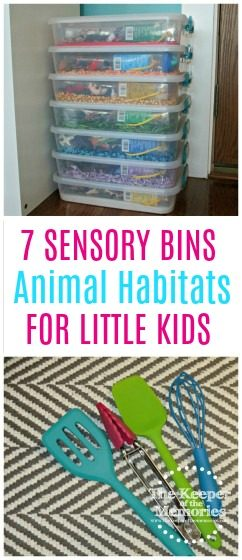 collage of rainbow sensory bins and tools with text overlay: 7 Sensory Bins for Little Kids Animal Habitats