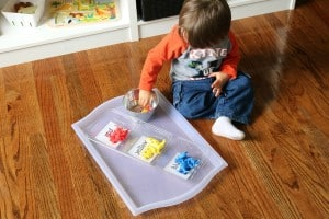 toddler boy sitting on the floor doing zoo-themed color sorting activity