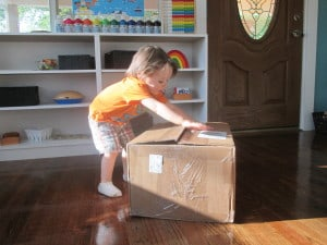 It's Box Day & Why We Chose Timberdoodle + Sonlight