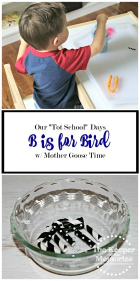 collage of B is for Bird activities for preschooler with text overlay: Our Tot School Days B is for Bird