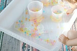 20+ Science Preschool Monthly Theme Ideas