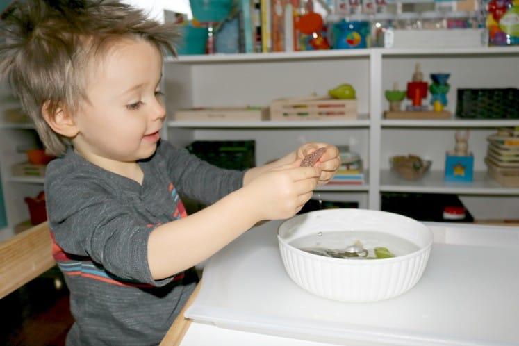 preschooler exploring frog eggs figurine