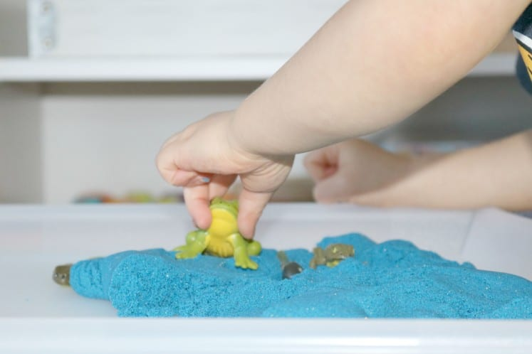 preschooler playing with frog figurine in blue sand