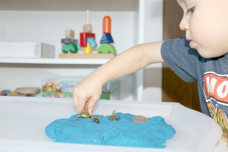 preschooler exploring frog life cycle using frog life cycle figurines and blue sand
