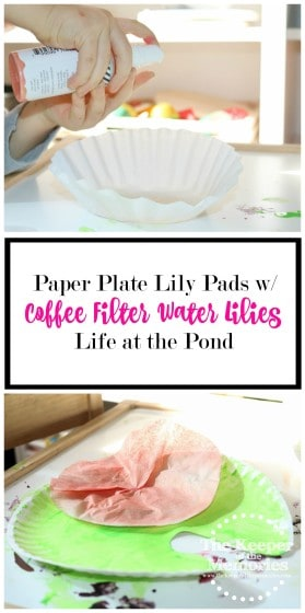 collage of pond paper plate lily pad images with text overlay: Paper Plate Lily Pads with Coffee Filter Water Lilies Life at the Pond