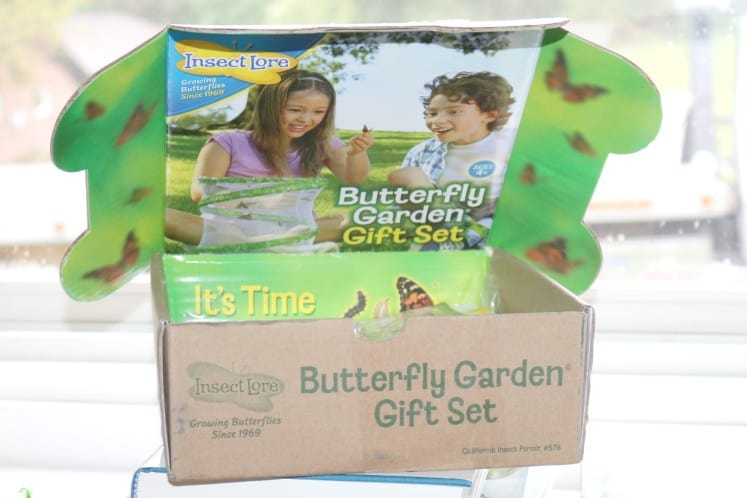 Insect Lore Butterfly Garden Gift Set in original box