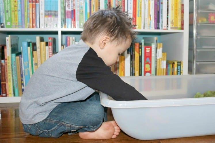 preschooler exploring Rainforest Floor Sensory Activity