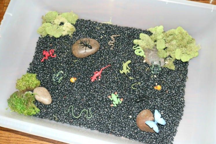 Rainforest Floor Sensory Bin filled with black beans, rocks, fake moss, and rainforest figurines