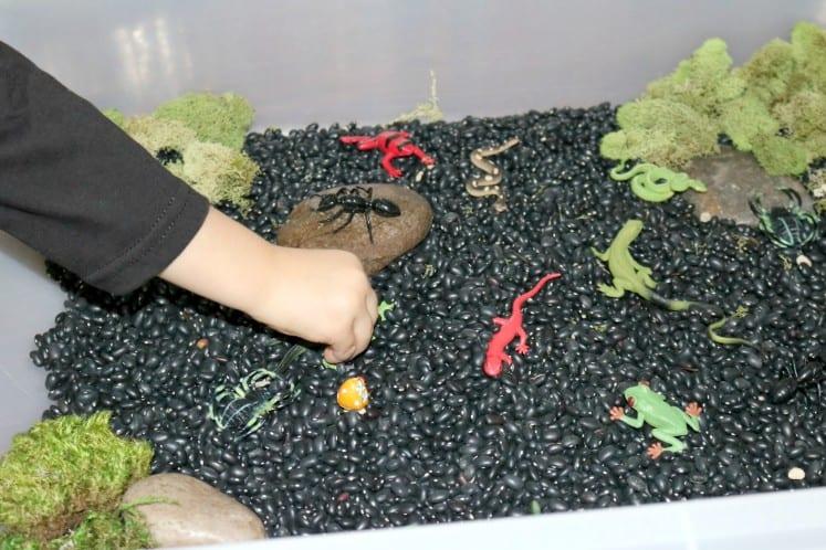 preschooler playing in rainforest sensory bin