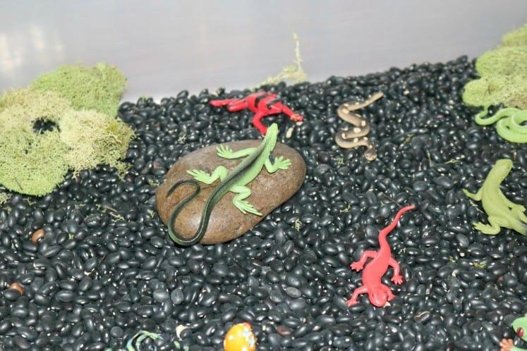 rainforest floor sensory bin with pretend lizard on rock