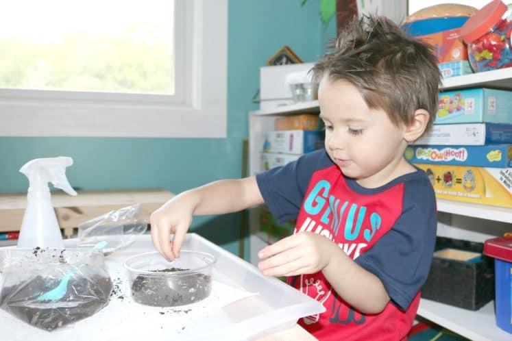 preschooler sprinkling seeds into plastic container