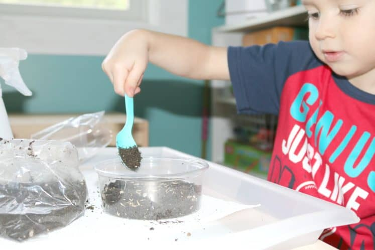 preschooler scooping dirt into plastic container to cover grass seed