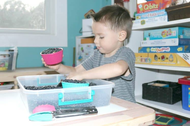 Kitchen Tools Investigation Station For Little Kids The