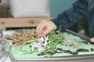 Preschool Safari Theme Activities Sensory 11