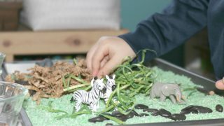 4 Quick & Easy Safari Preschool Monthly Theme Ideas for Little Kids