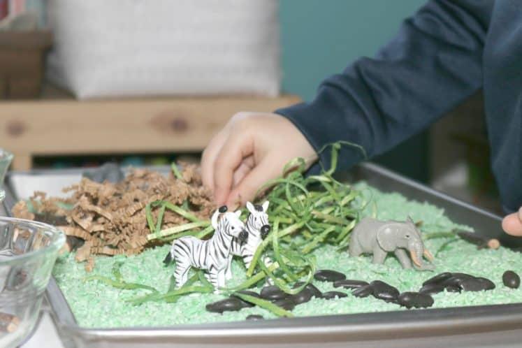 Preschool Safari Theme Activities Sensory 11