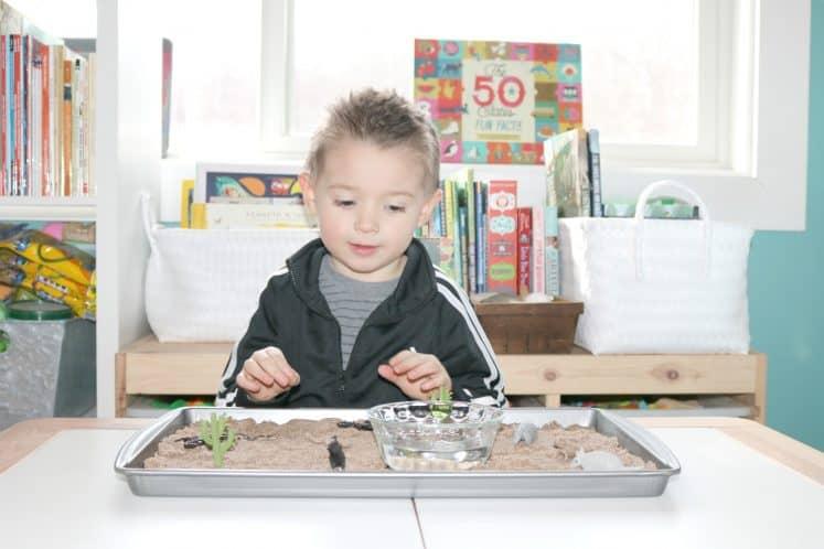 preschooler exploring desert sensory activity on metal cookie sheet