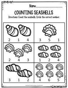 Counting Seashells