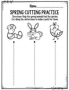 Spring Cutting Practice