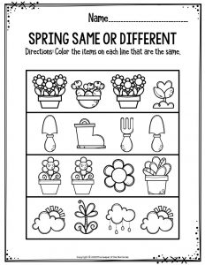 Spring Same Or Different