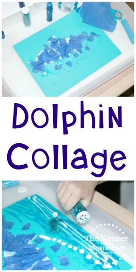 collage of dolphin process art images with text: Dolphin Collage