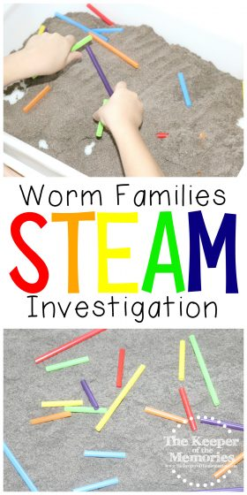 collage of worm activity images with text: Worm Families STEAM Investigation