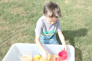 Corn Scooping Farm Preschool Monthly Theme Sensory Bin
