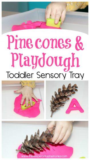 Pinecones & Playdough