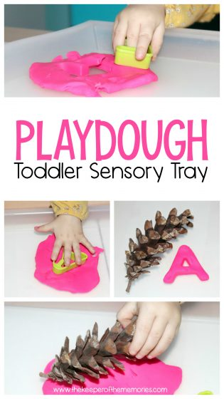 Playdough Toddler Sensory Tray