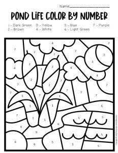 Color by Number Pond Preschool Worksheets Cattails