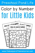 Color by Number Pond Preschool Worksheets