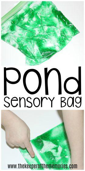 Pond Sensory Bag images with text: Pond Sensory Bag