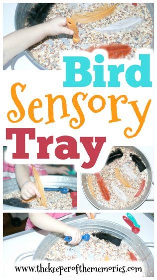 Bird Sensory Tray