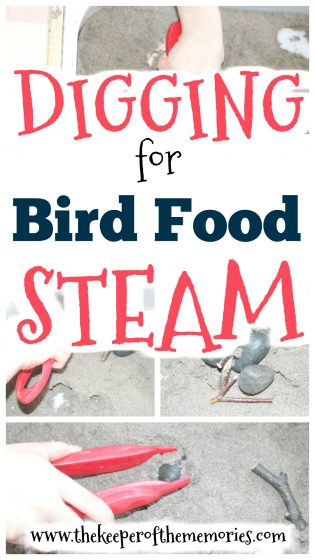 sticks and stones in dirt sensory bin with text: Digging for Bird Food STEAM