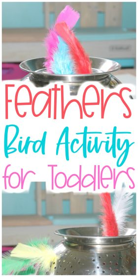 Feathers Bird Activity for Toddlers