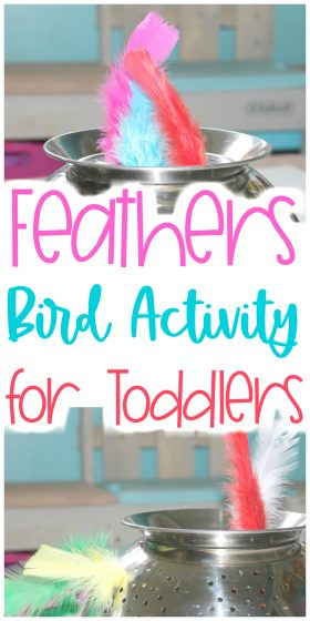 colander and colorful feathers with text: Feathers Bird Activity for Toddlers