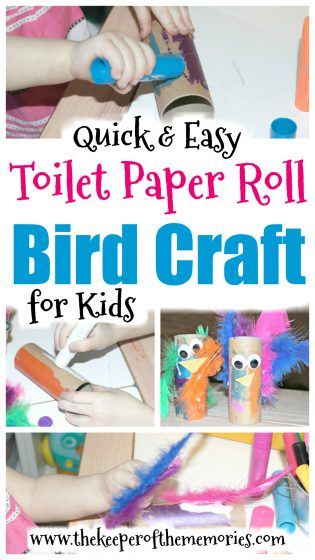 collage of bird craft images with text: Quick & Easy Toilet Paper Roll Bird Craft for Kids