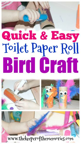 collage of bird craft images with text: Quick & Easy Toilet Paper Roll Bird Craft
