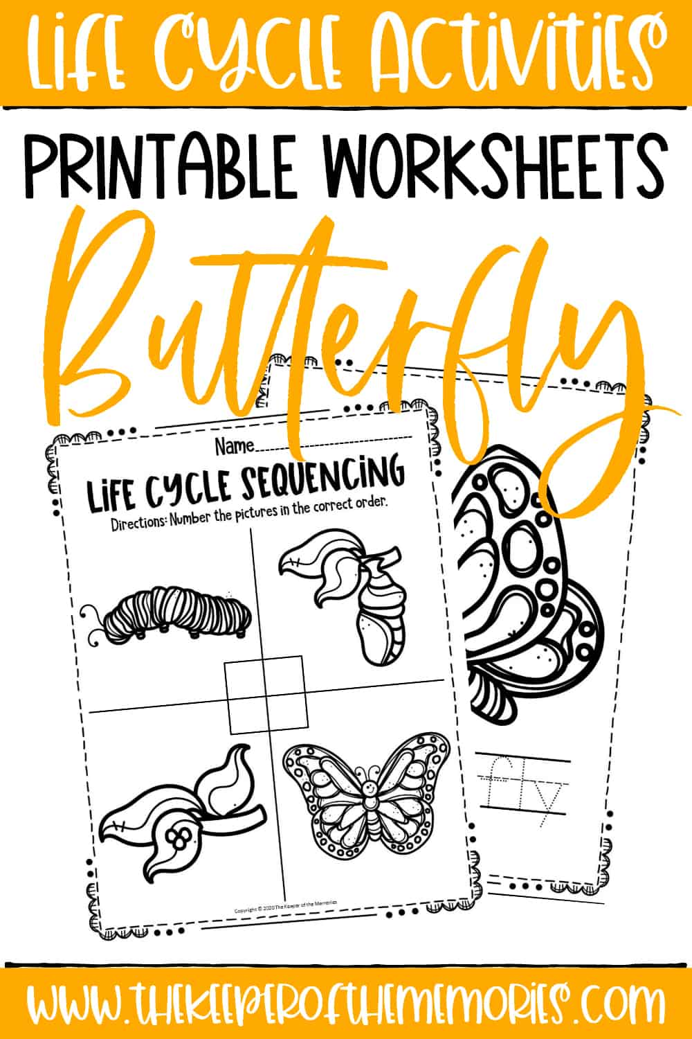 Free Printable Butterfly Life Cycle Worksheets