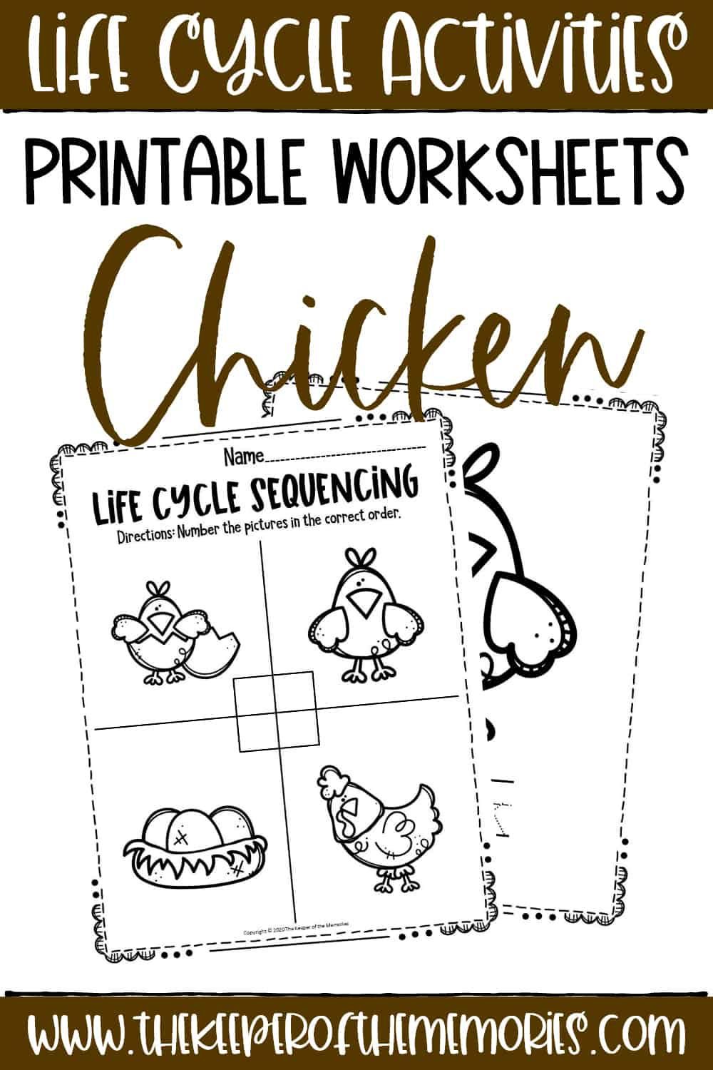 Free Printable Chicken Life Cycle Worksheets