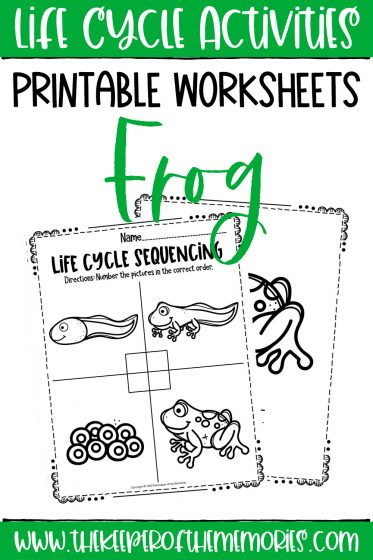 collage of Frog Life Cycle Printable Worksheets with text: Life Cycle Activities Printable Worksheets Frog