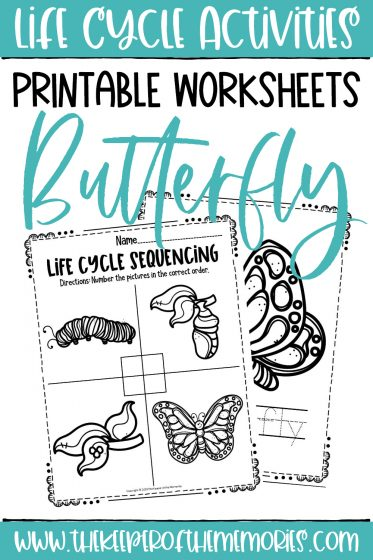 collage of Butterfly Life Cycle Printable Worksheets with text: Life Cycle Activities Printable Worksheets Butterfly