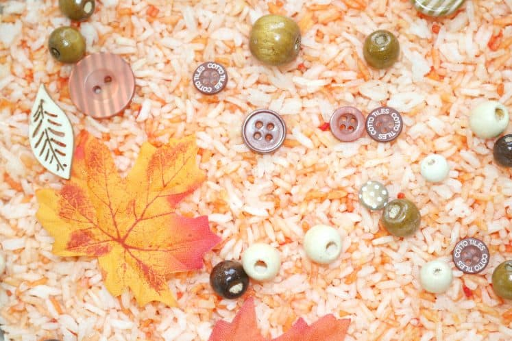 autumn sensory tray with dyed rice