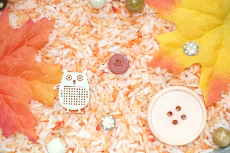 autumn sensory tray with wood veneer owl
