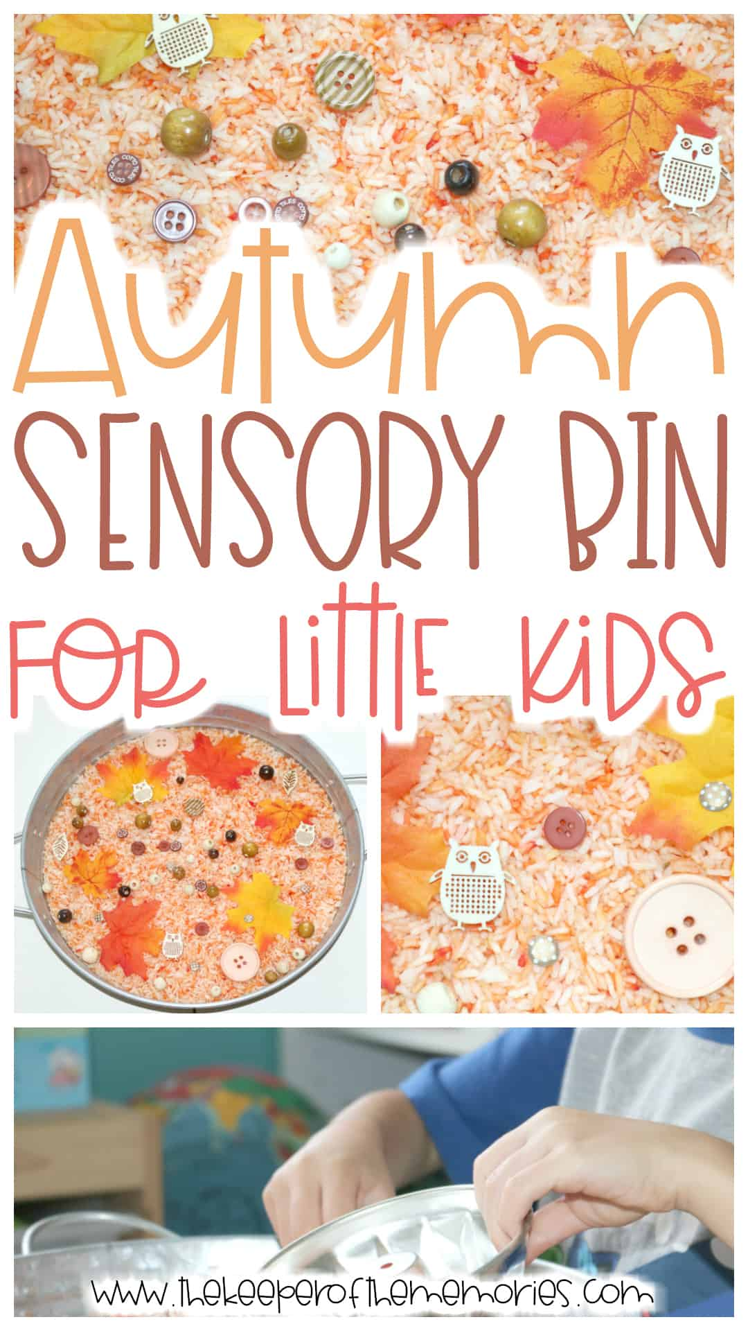 Autumn Sensory Bin for Preschoolers & Kindergartners