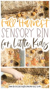 collage of fall sensory bin images with text: Fall Harvest Sensory Bin with Little Kids