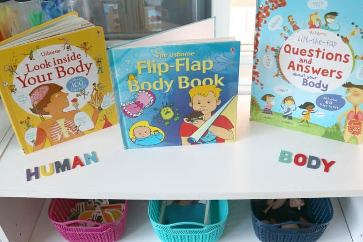 """wooden letters that spell """"human body"""" on a shelf with human body picture books"""