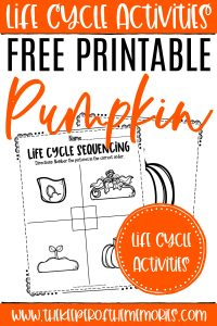 Pumpkin Life Cycle Worksheets with text: Life Cycle Activities Free Printable Pumpkin Life Cycle Activities