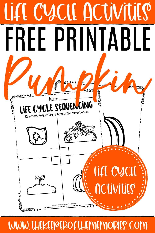 Free Printable Pumpkin Life Cycle Worksheets