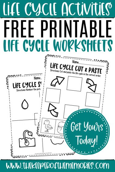 collage of life cycle worksheets with text: Life Cycle Activities Free Printable Life Cycle Worksheets Get Yours Today!